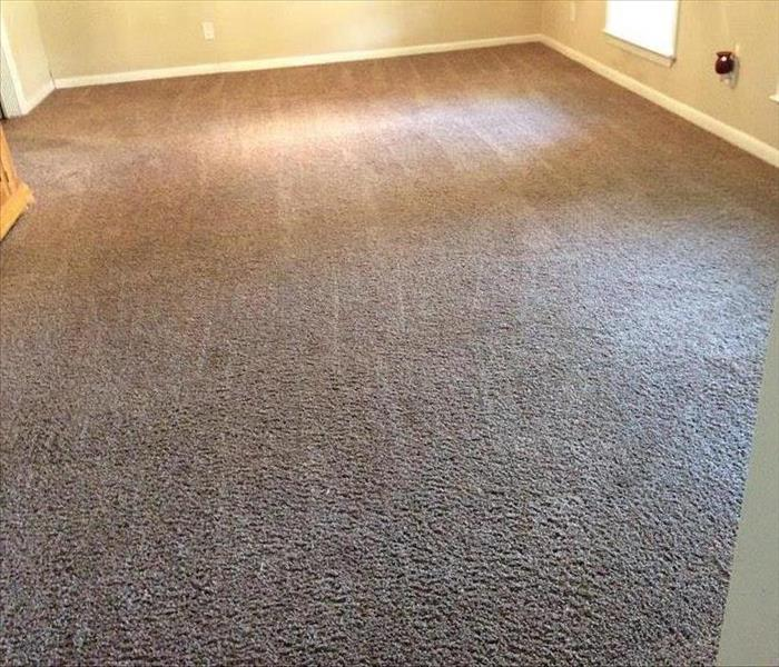 Carpet Cleaning in Greenville, TX After