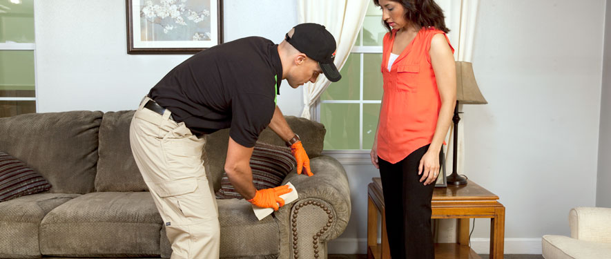 Greenville, TX carpet upholstery cleaning
